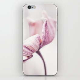 Still in Winter iPhone Skin