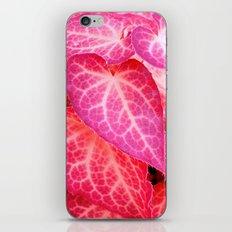 pink leaf I iPhone & iPod Skin