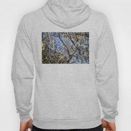 Nature Series: Spring Hoody