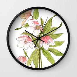 Rose Tinted Hellebore Wall Clock