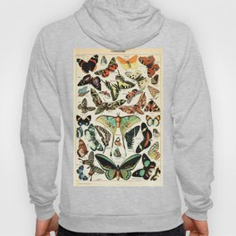 Papillon I Vintage French Butterfly Charts by Adolphe Millot Hoody