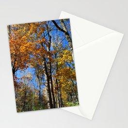 Fall Nips Stationery Cards