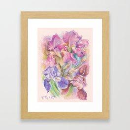 Iris Garden pastel drawing Framed Art Print