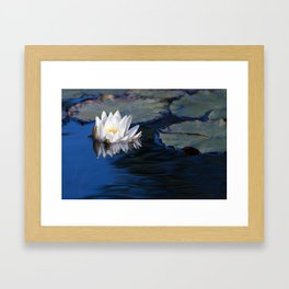 Water Lily & Lily Pads Framed Art Print