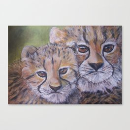 CUBS WATCHING MUM 2  Canvas Print