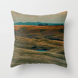 The Beauty of Nothing and Nowhere Throw Pillow