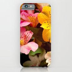 Lily of the Incas Bouquet iPhone 6s Slim Case