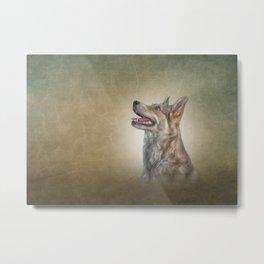 Drawing Mongrel dog Metal Print