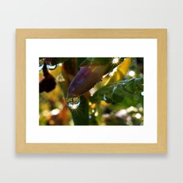 Life By The Drop-61 Framed Art Print
