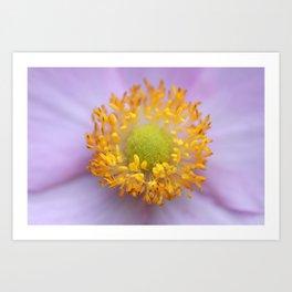 Anemone - JUSTART © Art Print