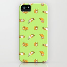 The Life of A Cat iPhone Case