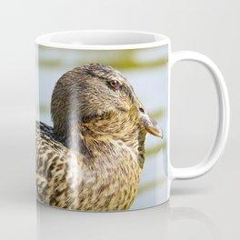 Female Mallard Coffee Mug