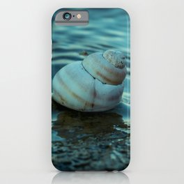 Snail shell on the shore. iPhone Case