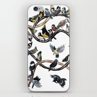tits iPhone & iPod Skins featuring Tits of the World by Jada Fitch