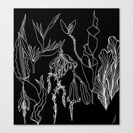 Exotic Plants. Canvas Print