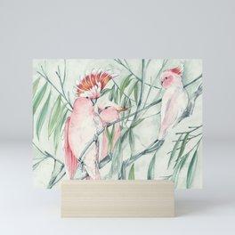 Major Mitchell Cockatoo Mini Art Print