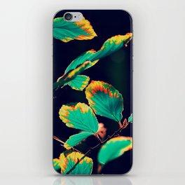#185 iPhone Skin