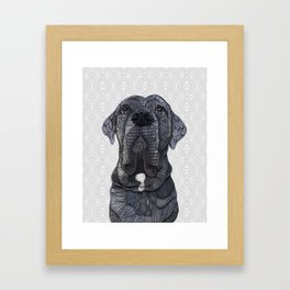 Chief the Mastiff Framed Art Print