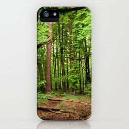 Glade of my Dreams  iPhone Case
