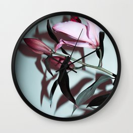 Stargazer Wall Clock