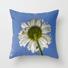 Sparkling Daisy Throw Pillow