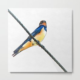 Swallow Bird On A Wire Metal Print