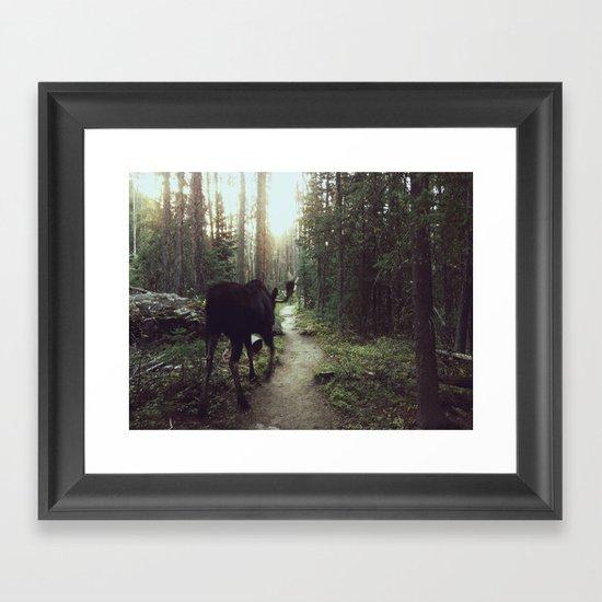 Trail Moose Framed Art Print