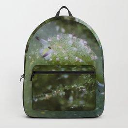 Shaun the sheep nudibranch herd Backpack