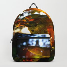 Sunburst Leaves Backpack