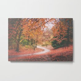 New York City Autumn in Brooklyn Metal Print