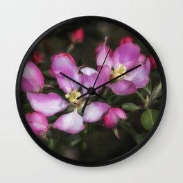 Pink Apple Blossoms Wall Clock