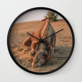 Naps In The Indian Desert Wall Clock