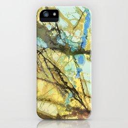 Gold Flash Labradorite iPhone Case