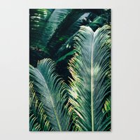 palm tree Canvas Prints featuring Palm Tree by Pati Designs