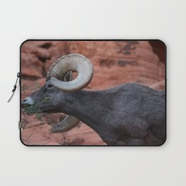 Breakfast - Valley of Fire Resident Laptop Sleeve