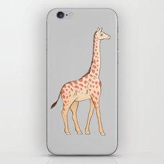 Tall Drink of Water iPhone & iPod Skin