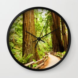 Path in Muir Woods Wall Clock