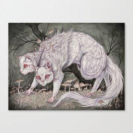 Albinism piece  Canvas Print