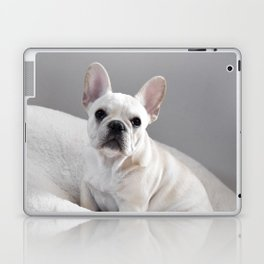 Cream Frenchie Laptop & iPad Skin