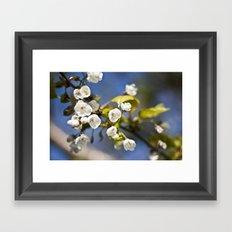 Spring is Near Framed Art Print