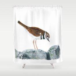 Killdeer Art 2 by Teresa Thompson Shower Curtain
