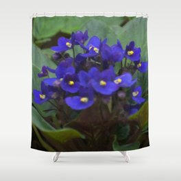 Floral Print 075 Shower Curtain
