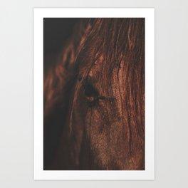 Horse - Sioux Art Print