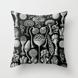 Ernst Haeckel - Mycetozoa (black) Throw Pillow