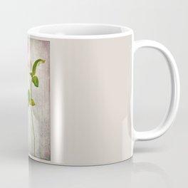 English Tea Rose  Coffee Mug