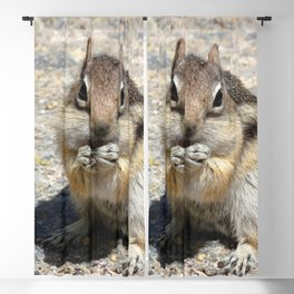 Watercolor Golden-Mantled Ground Squirrel 05, Two-Handed Lift Blackout Curtain
