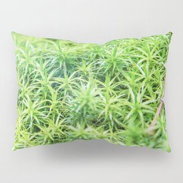 Forest of moss Pillow Sham