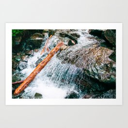 Creek bed in Squamish, Canada Art Print