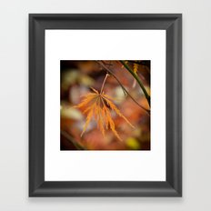 Adaptations Framed Art Print