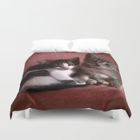 kittens Duvet Covers featuring Brother kittens by Chico Sanchez